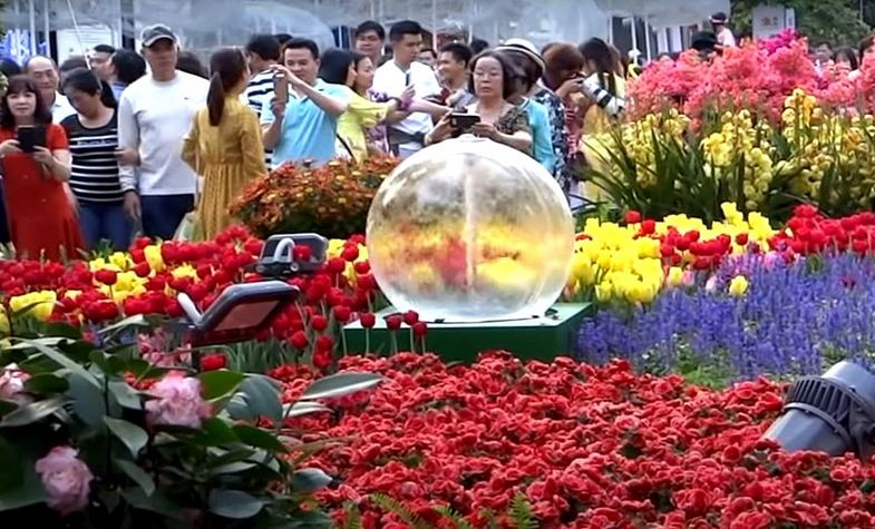 Festival and holidays in Vietnam